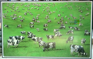 Ca$h Cows by Dean Riley - Acrylic on Canvas, stretched and framed in double float frame
