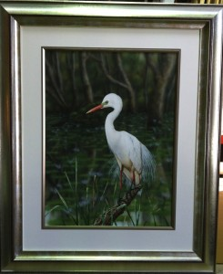 """Egret"" by Greg Postle, double hand gilded frame & muesum glass ...can you even see the glass!"